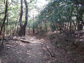 破線路の道は古い林道?