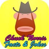 Top 100 Chuck Norris jokes
