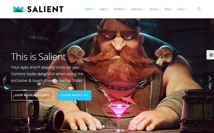 Features of Salient WordPress Theme