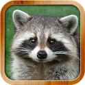 Kids Learn About Animals icon