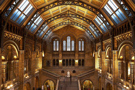 Natural History Museum interior London.jpg - The interior of the stately Natural History Museum in London.