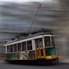 Speed yellow by Carlos Palhau - Transportation Trains ( história, colors, velocidade, turismo, carris, yellow, portugal, amarelo, lisboa, turistas )