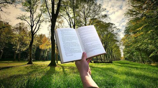 Lectura en la Naturaleza y Construcción de Cajas Nido ¿ te apuntas?