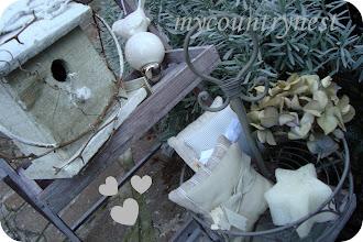Photo: alzatina e casetta uccellini, personale