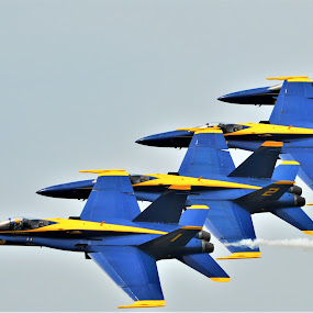 Tucked in by Benito Flores Jr - Transportation Airplanes ( coast, nas, f-18, pilots, navy, blue angles, formation, texas, hornet,  )
