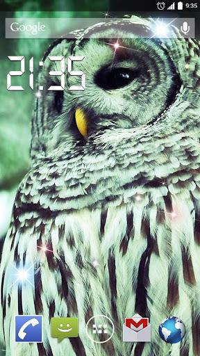 Flying Owl 4K Live Wallpaper