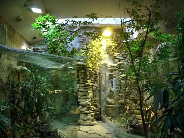 Wnętrze Pawilonu Gadów