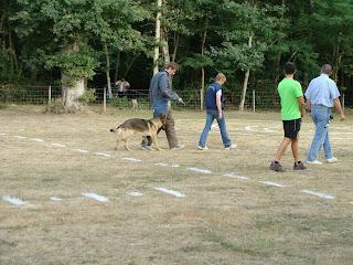 club canin 33240