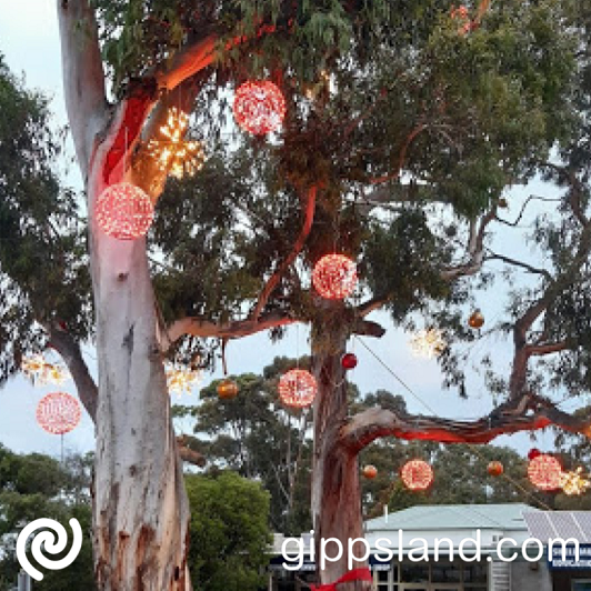 The existing lights and red ribbons installed in San Remo trees