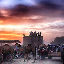 by Abdul Rehman - City,  Street & Park  Street Scenes (  )