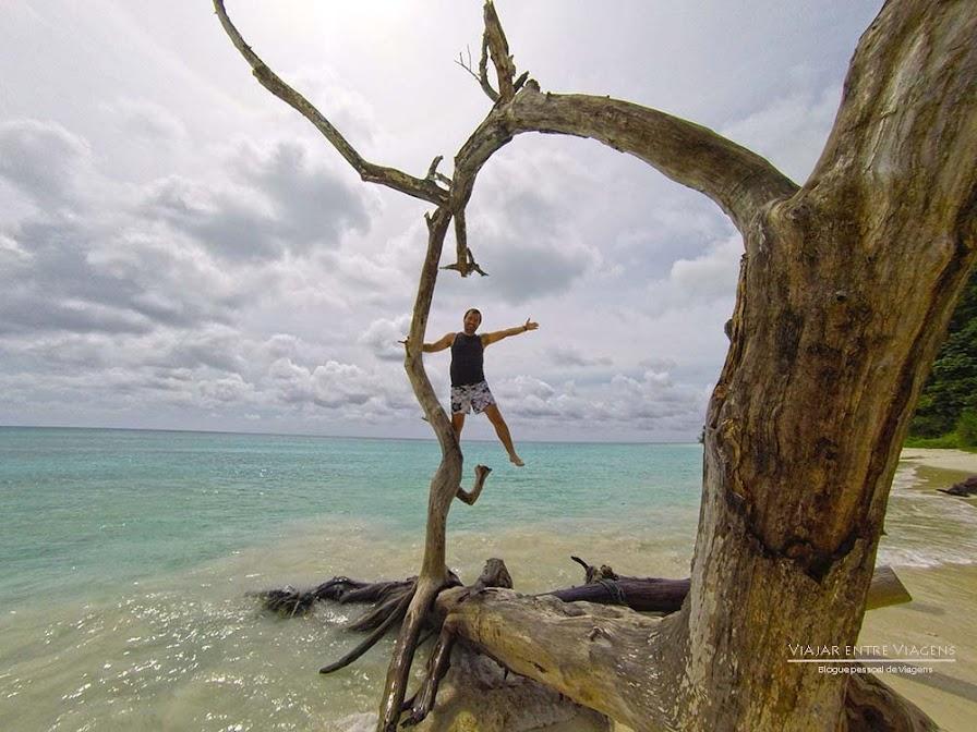 Visitar as Ilhas Andaman (alojamento, restaurantes e transporte entre as ilhas) | Índia