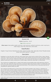 Book Of Mushrooms Android Apps On Google Play