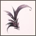 花香の羽(陰)