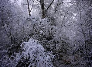 Photo: www.wanderinginalaska.com