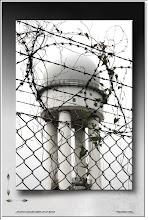 Foto: 2010 08 16 - R 10 08 11 104 - P 098 - Tempelhof Berlin