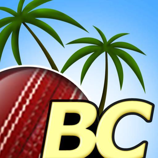 Beach Cricket Pro (game)