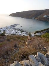 Photo: Amorgos