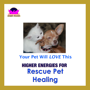Dissolve trauma from before rescue with Rescue Pet Healing 24/7 Lifetime program on CD