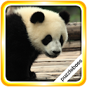 Jigsaw Puzzles: Pandas icon