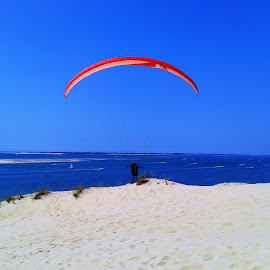 A paraglider and sand beach by Svetlana Saenkova - Instagram & Mobile Android ( sand, blue sky, white blue red, glide, sport,  )