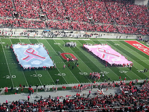 Photo: Tribute to breast cancer