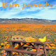 Download Buen provecho For PC Windows and Mac