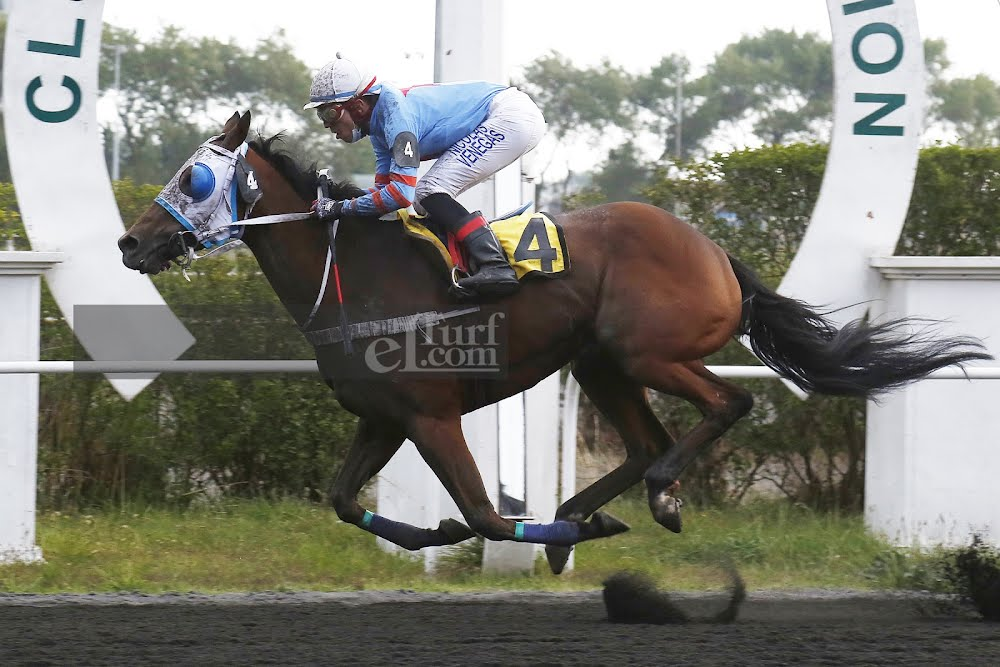 El Audax (Boboman) se adjudicó Handicap (1100m-Arena-CHC). - Staff ElTurf.com