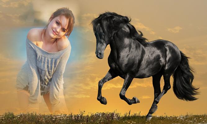 Horse Photo Frame - screenshot