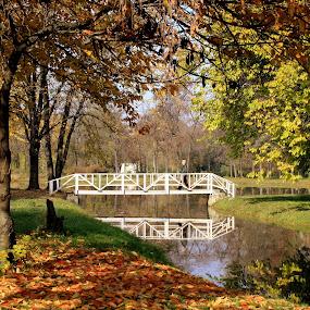 by Emil Chuchkov - City,  Street & Park  City Parks ( cuckove canon skopje macedonia autumn )