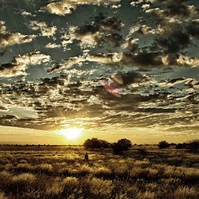 Namibian sunrise by Paul Carter - Landscapes Prairies, Meadows & Fields