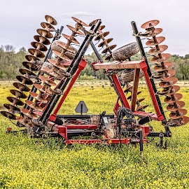 Plow by Richard Michael Lingo - Artistic Objects Other Objects ( artistic objects, plow, spring, clover, tilling )