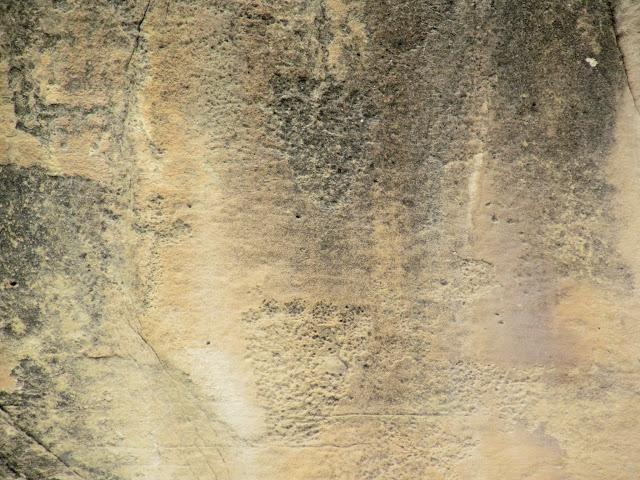 Bear print petroglyphs