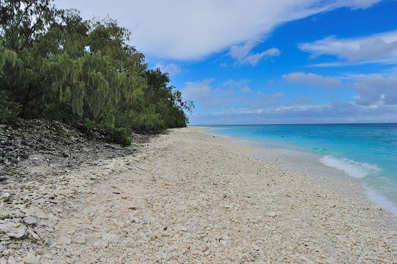 ライトハウスの海・レディエリオット島の写真
