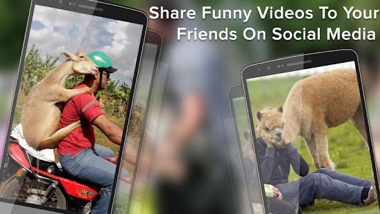 Funny Videos for Whatsapp- screenshot thumbnail