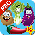 Vegetable Flashcards V2 PRO icon