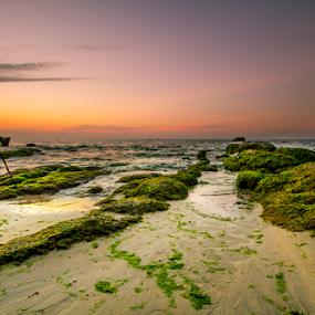 untitled by Rob De Eduardo - Landscapes Sunsets & Sunrises ( sunset, long exposure, beach, landscape, rocks )