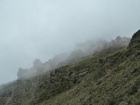 Forêt de pierres dans la brume