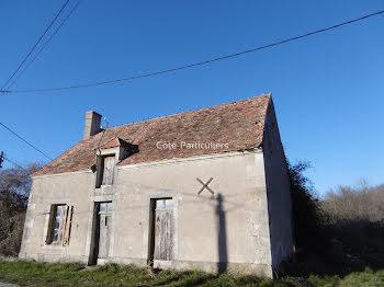 maison à Uzay-le-Venon (18)