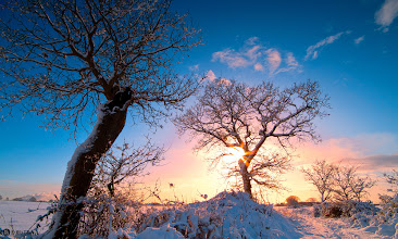 Photo: The Sunrise In The Snow