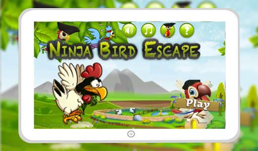 Ninja Bird Escape