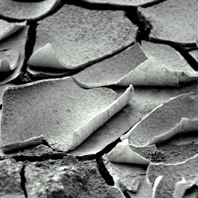 Dry Season by Nelwan Handoko Hasan - Landscapes Weather ( dry, bw, land, earth )