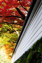 Photo: 田中