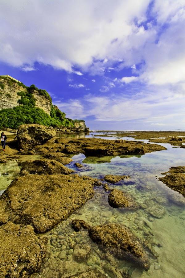 by Budi Hartono - Landscapes Waterscapes