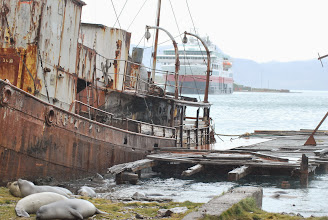 Photo: Whaling Station