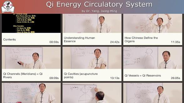 Qi Circulatory System Gratis