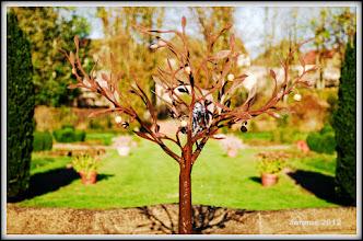 Photo: Garten in der Herbstsonne