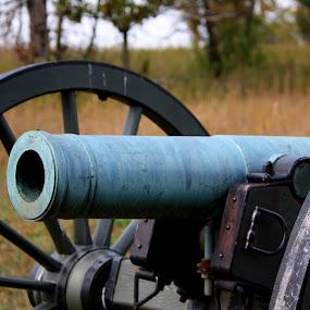 Wilson's Creek Battlefield Civil War Cannon by Leslie Hendrickson - Artistic Objects Antiques ( missouri, civil war, historic, wilson's creek, cannon,  )