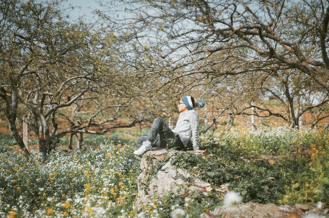 Mộc Châu – nơi những nàng tiên xuân ngự trị - ảnh 11