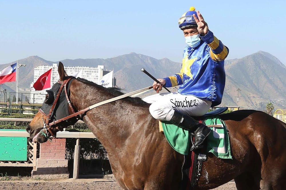 Para sacarse el sombrero: David Sánchez llegó a los 3.000 triunfos en su gran carrera