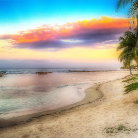 Jamaica by Scott Roth - Landscapes Beaches